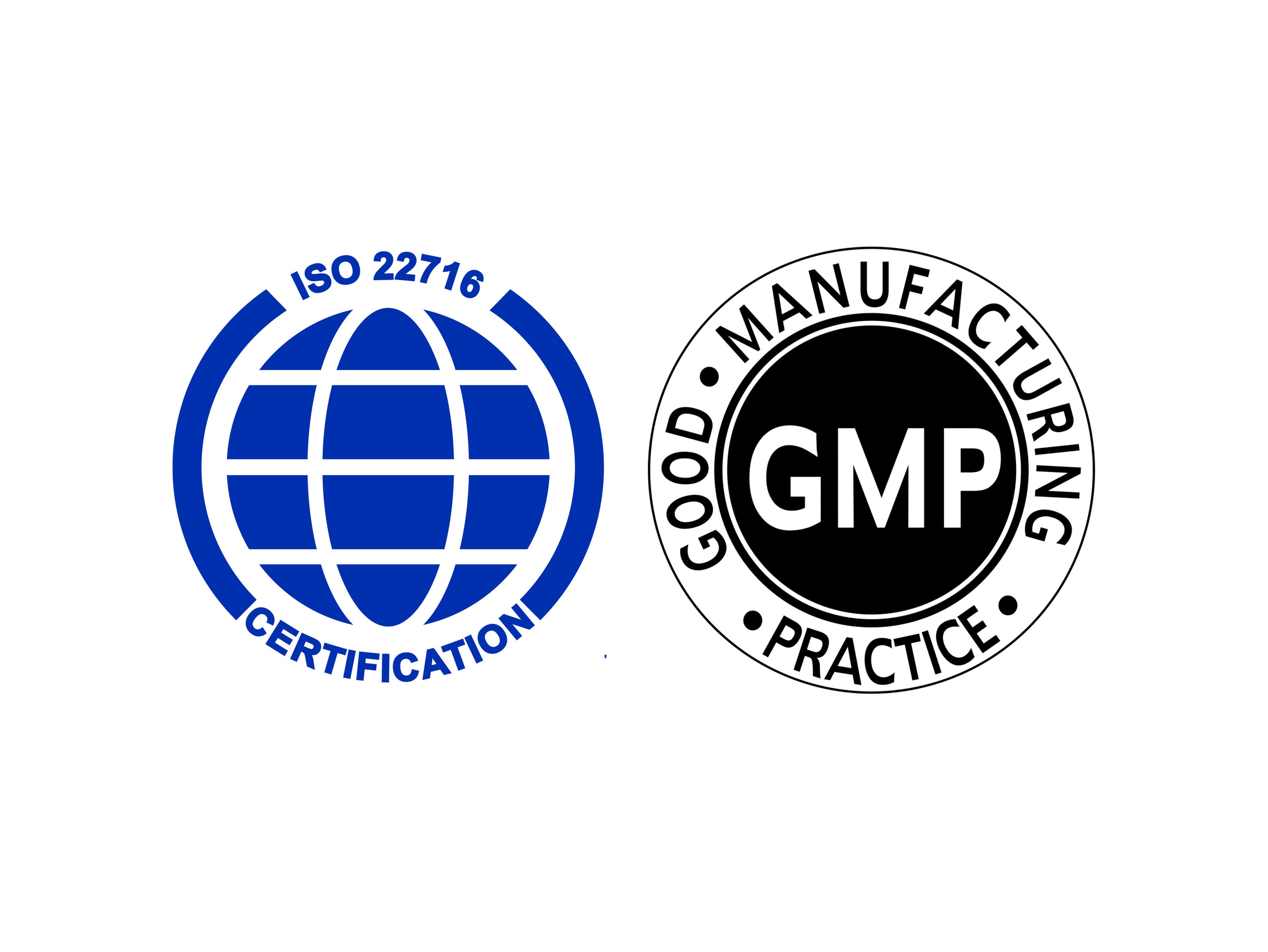 logo GMPISO
